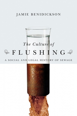 The Culture of Flushing