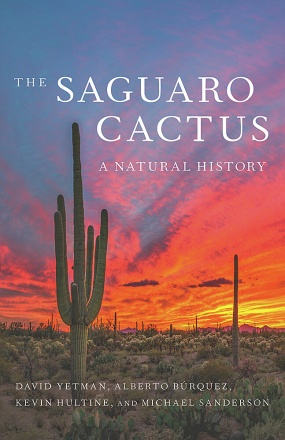 The Saguaro Cactus