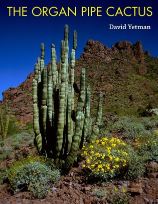 The Organ Pipe Cactus