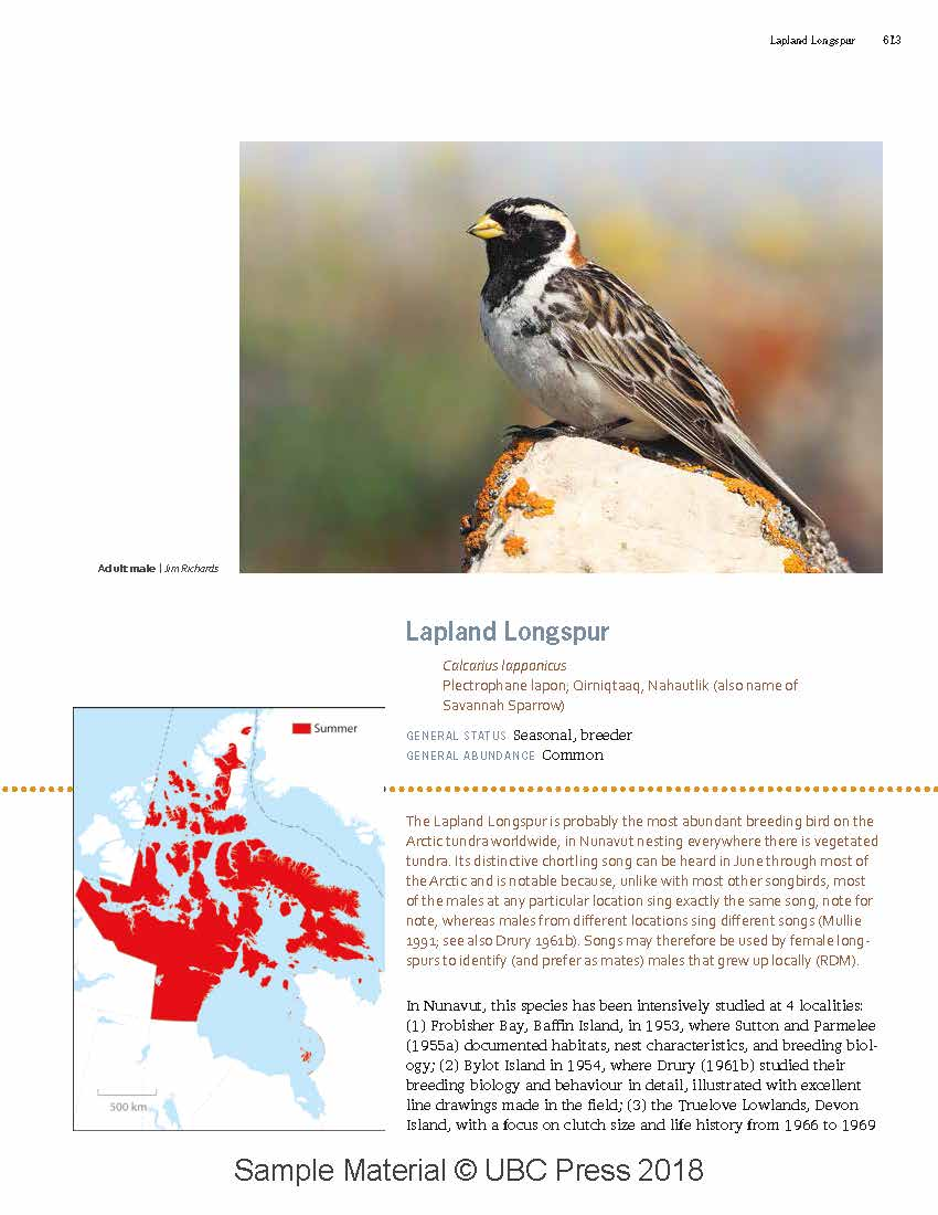 UBC - Special Projects - Birds of Nunavut Promo Page - BON_ExampleForWeb.jpg